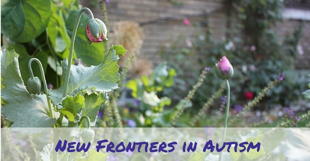 new frontiers in understanding and treating autism