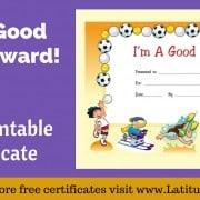 I'm A Good Sport Certificate WordPress