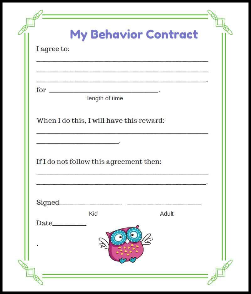 Owl Behavior Contract Border