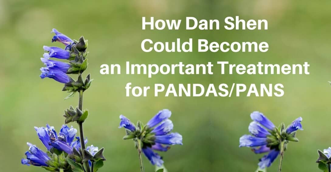 How Dan Shen Could Become Important Treatment PANDAS-PANS