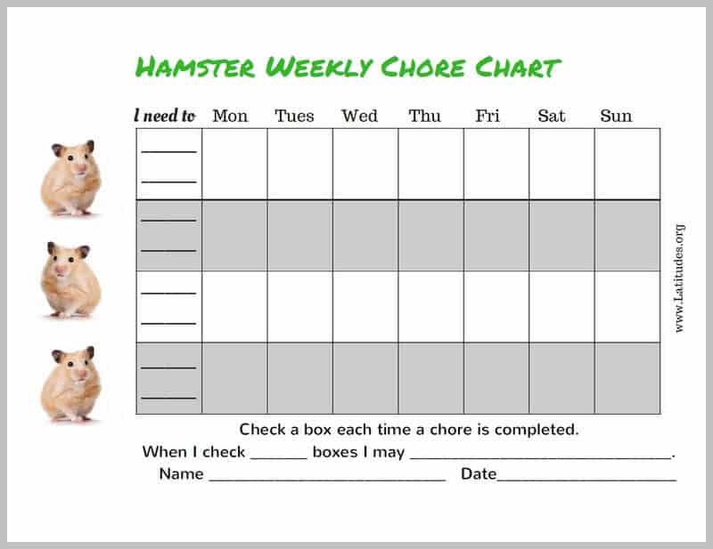 Hamster 4th-5th Grade Chore Chart Border