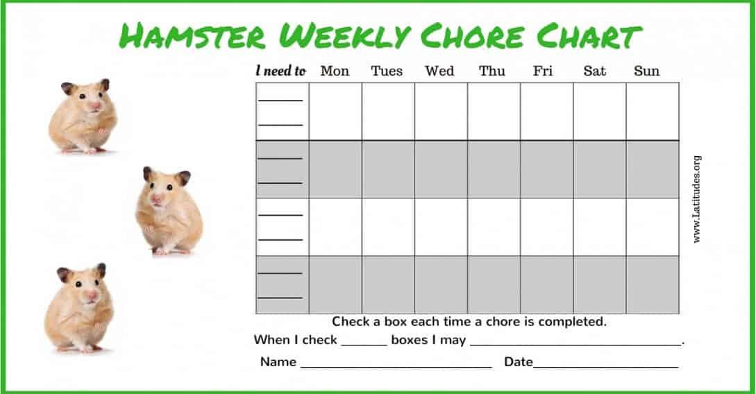 Free Hamster 4th-5th Grade Chore Chart